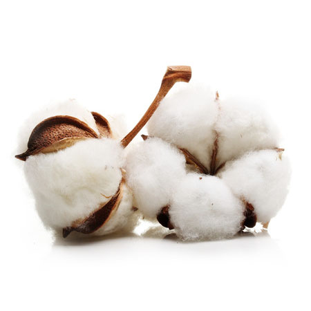 Bouclé Cotton